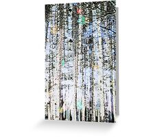 Light Up The Trees Greeting Card