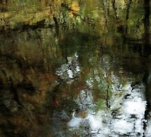 Black Pools of Autumn Light by Harry Snowden