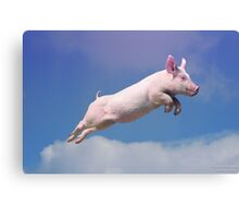 And Pigs Can Fly Canvas Print