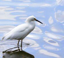 Snowy Egret in the blue water Sticker