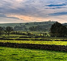 A Few Dry Stone Walls by David J Knight