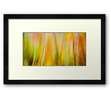 Autumnabstract Framed Print