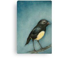 Bush Robin 1 Canvas Print