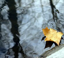 Floating... by sternbergimages