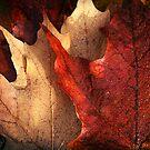 Layered Leaves by Beth Mason