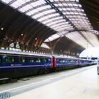 Heathrow Express by Jessica  Page