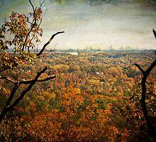 Autumn View by Jonicool