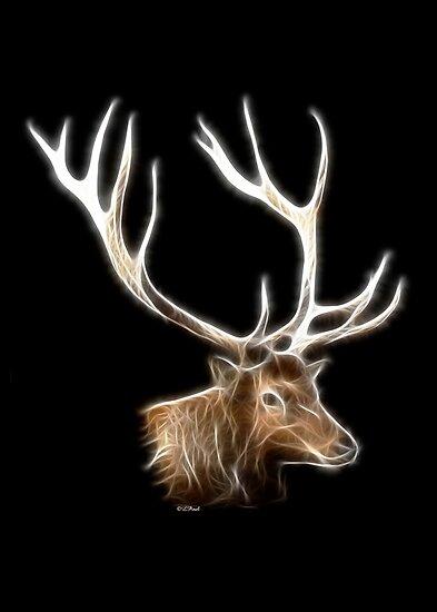Elk Head by Liane Pinel