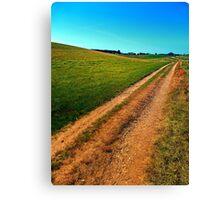 Endless trail near the border Canvas Print