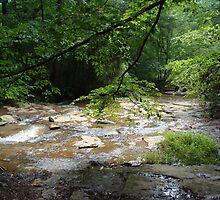 Elder Mill Creek by writerga07