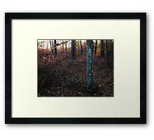 November Rainbow Framed Print