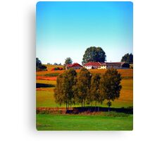 Guardian trees in front of a farm Canvas Print