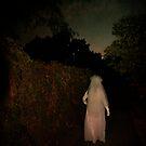 A walk in the dark by Lynn Starner