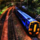 The 16:04 from Haymarket Station by Den McKervey