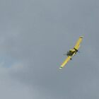 Crop Duster by JDew12345