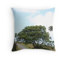 Winery Road Throw Pillow