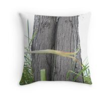 Unusual Tree Trunk Throw Pillow
