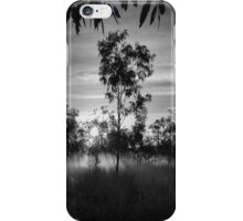 Morning Mist at Fitzroy iPhone Case/Skin