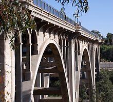 Pasadena Bridge-P by Photos55