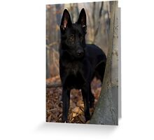 Shepherd in the Woods Greeting Card