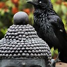 Buddha and crow by Robyn Lakeman