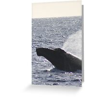 Humpback Head Lunge Greeting Card