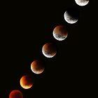 July 2011 Solar eclipse by Robyn Lakeman