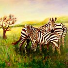 Zebras at Ngorongoro Crater by Sher Nasser