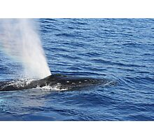 Humpback Whale Powerful Exhalation Photographic Print