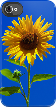 Sunflower, iphone case by Eyal Nahmias