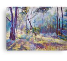 Symphony of Bush Colours Canvas Print