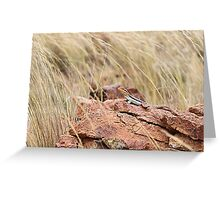 Tawny Crevice Dragon Greeting Card