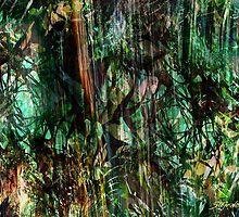 Equatorial Rain by Stefano Popovski