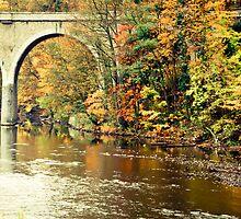 Across the river by Ulla Jensen