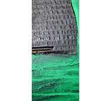 crow monolith 8 Photographic Print