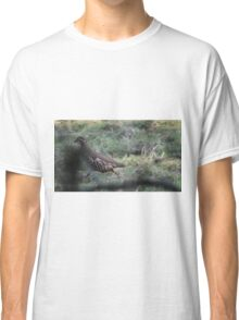 Red Legged Partridge. Classic T-Shirt