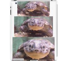 Pelomedusa subrufa! iPad Case/Skin