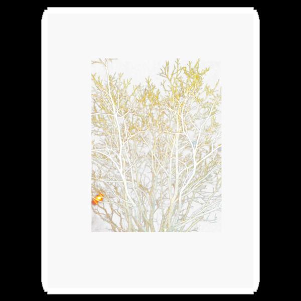Iceland Tree 1 by venitakidwai1