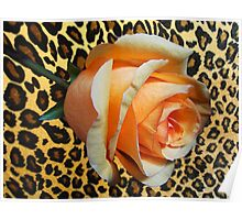 Leopard Rose Poster