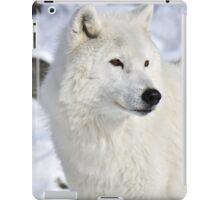 Contemplate iPad Case/Skin