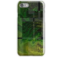 iPhone Case of painting.. Swamp Seeker... iPhone Case/Skin
