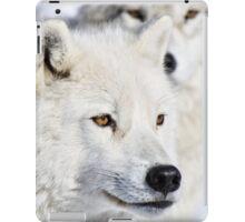 Emanate iPad Case/Skin