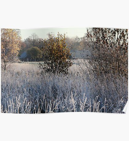 Farmstead in first frost day in autumn Poster