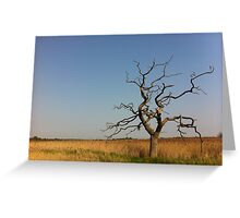 Big Skies 2 Greeting Card