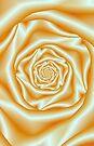 Orange Rose Spiral by Objowl