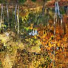 Autumnal Reflections II by Natalie Kinnear