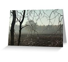 First frost on tree branches Greeting Card