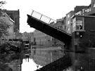 Bridge Number 6 by Lucinda Walter