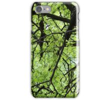 Green Tree Branches iPhone Case/Skin