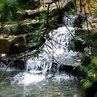 A Tiny Waterfall by shelleybabe2